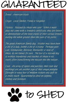 Rescue dog blueprint: Rescue dogs are the best breed!