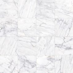 Carrara Porcelain Glossy X High Definition Tile In White - 6 x 12 white porcelain tile
