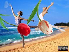 #Bale Estetik Ve Zerafetin Zirvesidir ♥♥♥ #And The Elegance Of Ballet Aesthetics Summit