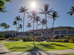 Staying at the Fairmont Orchid resort, Hawaii - Forever Lost In Travel Volcano National Park, National Parks, Fairmont Orchid, Waterfall Features, Big Island Hawaii, Hawaiian Islands, Island Life, Oahu, Orchids