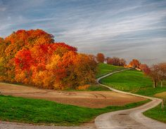 """Check out new work on my @Behance portfolio: """"Automne en Suisse I"""" http://be.net/gallery/32702479/Automne-en-Suisse-I"""