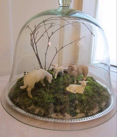 Our glass cloche set up for Easter. Sheep and lambs came from the girl's extensive Schleich collection, and we collected moss, sticks, and rock from the yard. This is a really cute idea! For the seasons and holidays! Glass Domes, Glass Jars, Oster Dekor, Cloche Decor, The Bell Jar, Bell Jars, Decoration Originale, Sheep And Lamb, Apothecary Jars