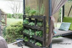 How to Build Pallet Vertical Garden DIY Wood Pallet Herb Garden Tutorial Vertical Pallet Garden, Herb Garden Pallet, Container Herb Garden, Diy Herb Garden, Herb Planters, Vertical Gardens, Home And Garden, Garden Art, Planter Ideas