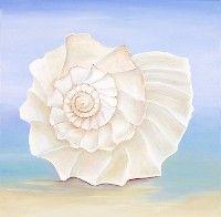 Sea Shell Series No. 8, a painting by American Nature Painter, Judith A. Maddox Saylor at JAMS Artworks.