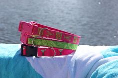 pink and green, lobsters, margaritas dog collars