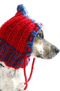 Small dog hoodie dog hat pet cowl pet clothing by FruitofPhalanges, $21.00
