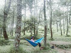Masih di #malang saat kabut mulai turun Loc bedengan dau malang #yoikimalang #amazingmalang #exploremalang #hammock #hammocklife #jalanjalanjawa #photography by @rilaachan