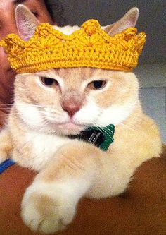 Ravelry: Kings Crown pattern by Crochet Crafts, Crochet Toys, Crochet Projects, Knit Crochet, Crochet Cat Hats, Crown Pattern, Cat Pattern, Gato Crochet, Cat Sweaters