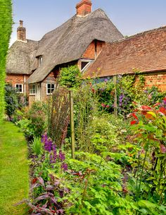 A herbaceous border in the garden of Well Cottage in Wilton, Wiltshire