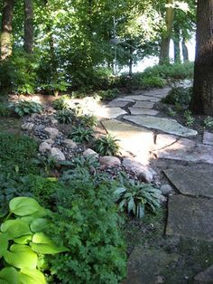 Maple Grove lakefront property - Traditional - Landscape - Minneapolis - Designing Nature Inc.