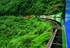 This full-day tour of Curitiba, Morretes, and Antonina in the Serra do Mar region includes a scenic train ride through the Atlantic Rainforest. Description from news.southamerica.travel. I searched for this on bing.com/images