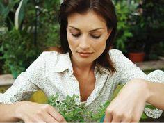 Detoxikace, tedy proces zbavení se škodlivin, je doporučována alergikům, ženám před otěhotněním, osobám bojujícím s nadváhou, ale i těm, kteří ...