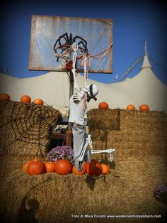 Gardaland Magic Halloween: basket macabro