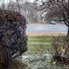 Snowing in #SpringfieldVT by souplesseur