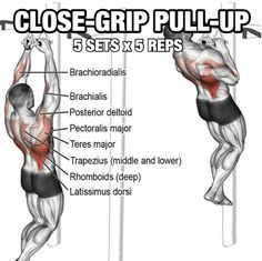 Back Workout But Slightly Different Part 5! Close-Grip Pull-Up