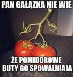 Wtf Funny, Funny Memes, Hilarious, Best Memes, Haha, Funny Pictures, Humor, Nanami, Fanny Pics