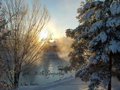 Please note:  The watermark will not appear on any product you purchase.    This particular scene was captured by me on a cold winter morning (4 degrees above zero), just a... #photogifts #singlephotocard #pamsfabphotos #dailyetsysales #compassionandempathy #epsteam #condolences