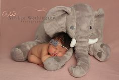 Newborn Photography Newborn with elephant newborn girl Ashlee Wethington Photography https://ashleewethingtonphotographydotcom.wordpress.com/blog/