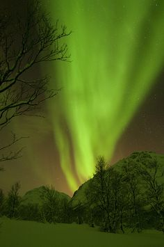Northern Lights - Nordlys by B_Olsen, via Flickr