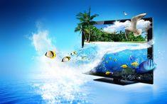 Monitor 3D de Creative Advertising, mar, peces tropicales, palmeras Fondos de pantalla - 2560x1600