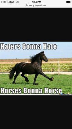HORSEING AROUND
