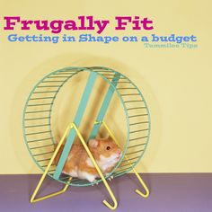 Frugally Fit...Getting in shape on a budget