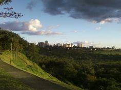 Parte do Banhado em São José dos Campos-SP- Br