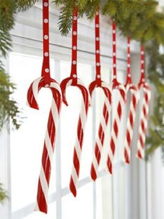 "Decorating with candy canes... cheap, easy and screams ""CHRISTMAS!"""