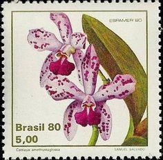 Selos: Cattleya amethystoglossa (Brasil) (orquídeas) Mi:BR 1785,Sn:BR 1711,Yt:BR 1439,Sg:BR 1862,RHM:BR C-1162