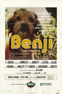 Benji : 1974 -One of the first movies(outside Disney Movies) I have seen in my life. I appreciate my parents who let me see many movies and bought me lots of books when I was a little child. Film Movie, Sweet Memories, Childhood Memories, Texas Movie, Charlie Rich, Tv Retro, Cinema Tv, Internet Movies, Old Tv Shows