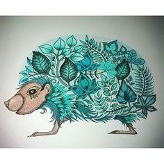 Livro Floresta Encantada - Johanna Basford