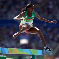 Olympic Olympic Athlete pro athletes, pro athletes, Triathlons Sports Sports…