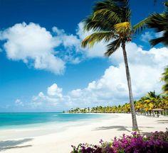 Antigua [Antigua y Barbuda]: La isla de las 365 playas