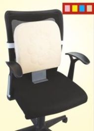 Buy Flamingo Memory Foam Back Rest Without Stand