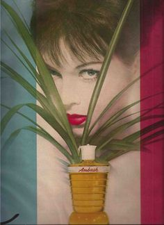 Dana Ambush Perfume Advertisement - Erwin Blumenfeld 1962. S)