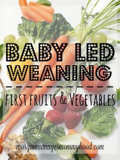 Here you'll find an extensive list of what to give your child for his baby led weaning first fruits and vegetables!