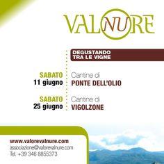 Degustando tra le Vigne della @Valnure 11 e 25 Giugno Vigolzone (PC)
