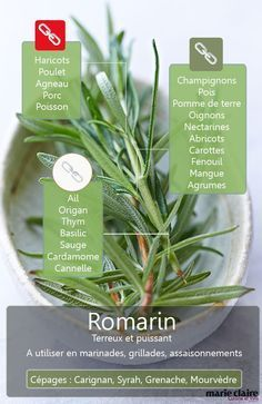 Spices And Herbs, Fresh Herbs, Cooking Tips, Cooking Recipes, Healthy Recipes, Marinade Sauce, Eat Pretty, Aromatic Herbs, Food Facts