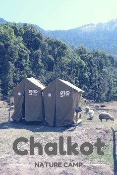 Chalkot Nature Camp in Uttrakhand, India