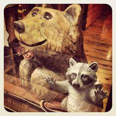 """Wild animals ;)"" #bear"