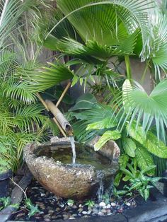 Stone bowl and bamboo spout for recirculating fountain.