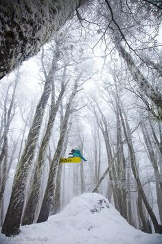 Ventures in snowboarding
