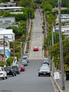 Baldwin Street in Dunedin, New Zealand is the steepest street in the world------ I used to love riding my bike down here as a child! Beautiful Streets, Beautiful Places, Places To Travel, Travel Destinations, Baldwin Street, New Zealand Image, New Zealand South Island, Kiwiana, New Zealand Travel