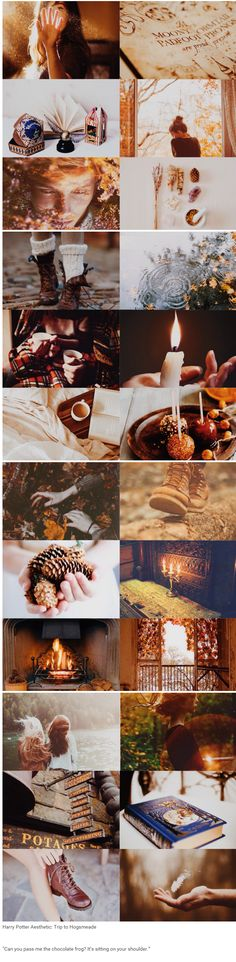 "foundinghouses:  Harry Potter Aesthetic: Trip to Hogsmeade | ""Can you pass me the chocolate frog? It's sitting on your shoulder."""