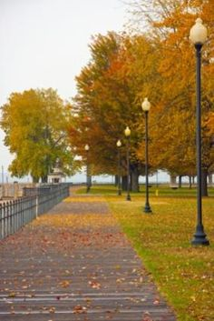 autumn in Rochester, NY  Charlotte (Ontario Beach) boardwalk Rochester, NY. This link contains a great list of Rochester area attractions.