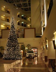 big urban christmas tree Terrachristmas