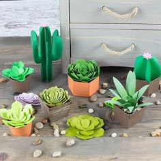 Silhouette Design Store: Paper Succulents And Cactus Bundle Description Designed to work perfectly with Silhouette Adhesive Vinyl to cut out a beautifully stylized piece of home decor. Also designed to cut from paper or cardstock. Summer Art Projects, Summer Crafts For Kids, Paper Crafts For Kids, Paper Succulents, Paper Plants, Paper Mache Crafts, Paper Crafts Origami, Silhouette Design, Silhouette Store