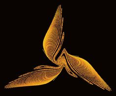 Image result for three winged bird: a chaotic strange behavior attractor