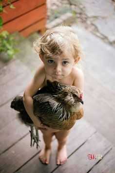 Cutest photo ever! #babies #chickens