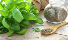 How to preserve and store dried basil. Here are some key tips for storing and preserving fried basil leaves all year long. Basil Tea, Fresh Basil, Storing Basil, Freezing Basil, Preserving Basil, Dried Basil Leaves, Basil Recipes, Stewed Tomatoes, Homemade Cleaning Products